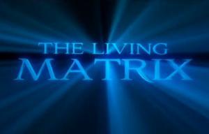 video_living_matrix