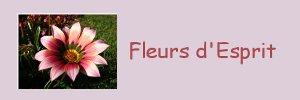 thumb_fleursesprit